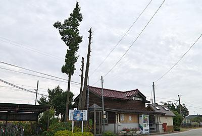 富山地鉄・立山線・釜ヶ淵駅、木造駅舎と背が高い木