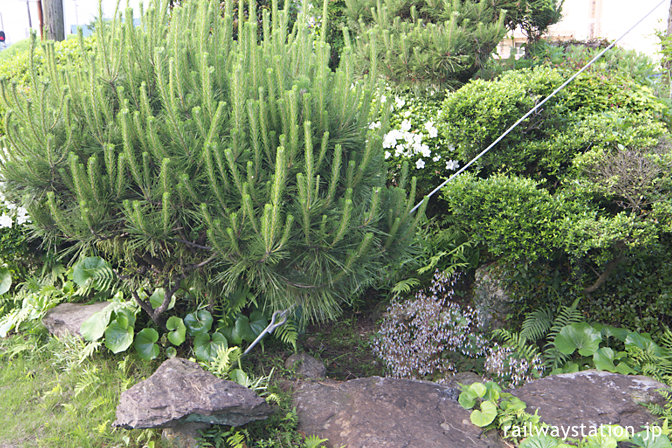 松浦鉄道・蔵宿駅、駅舎横の枯池のあるミニ庭園跡