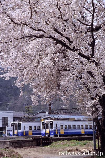 えちぜん鉄道・勝山永平寺線・永平寺口駅、列車と満開の桜