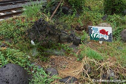 岳南鉄道(現・岳南電車)岳南原田駅、ホーム片隅の枯池