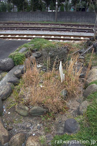 岳南鉄道 (現・岳南電車) 岳南原田駅、枯池を横から見る