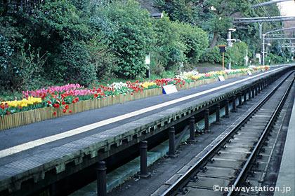 明治神宮への初詣のため正月だけ使われる原宿駅3番ホーム
