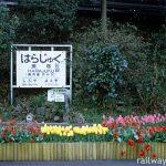 原宿駅 (JR東日本・山手線)~都内最古の木造駅舎は今日も大忙し~