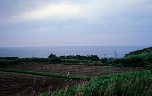 山形県遊佐町、羽越本線・女鹿駅前の畑と日本海