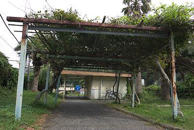 JR東日本・外房線・行川アイランド駅、通路の藤棚