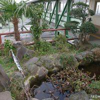 根府川駅~東海道本線の数少ない無人駅、慰霊碑と池庭…~