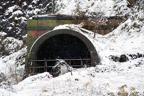 JR東日本・青海川駅近くの信越本線旧線廃線跡、レンガ造りのトンネル