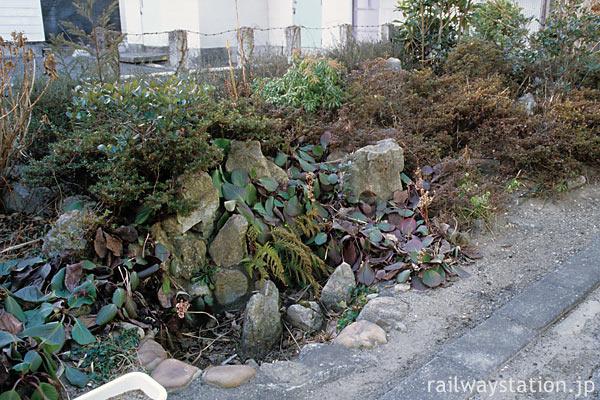 JR常磐線・末続駅、駅舎側ホーム、草木に埋もれる枯池