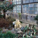 JR常磐線・末続駅、木造駅舎正面に造られた枯池とミニ庭園