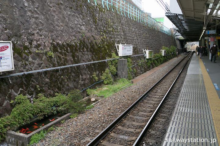 田端駅1番線・京浜東北線大宮方面ホームにある鑑賞池