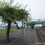 函館本線・江部乙駅、梨の木が植えられたプラットホーム