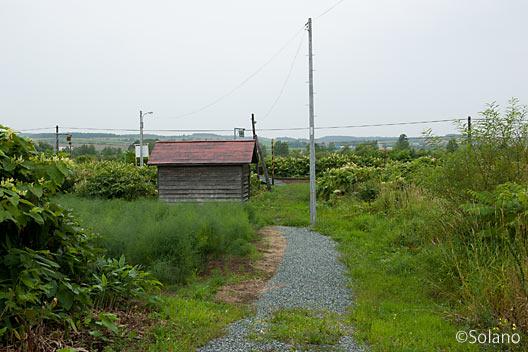 宗谷本線・北星駅、駅入口からの眺め