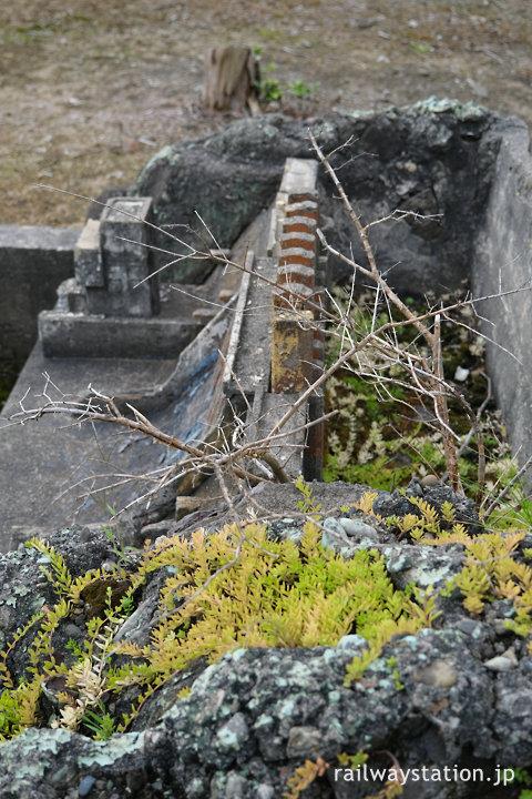 石勝線・川端駅のダムを模した枯池、バラが植えられている?