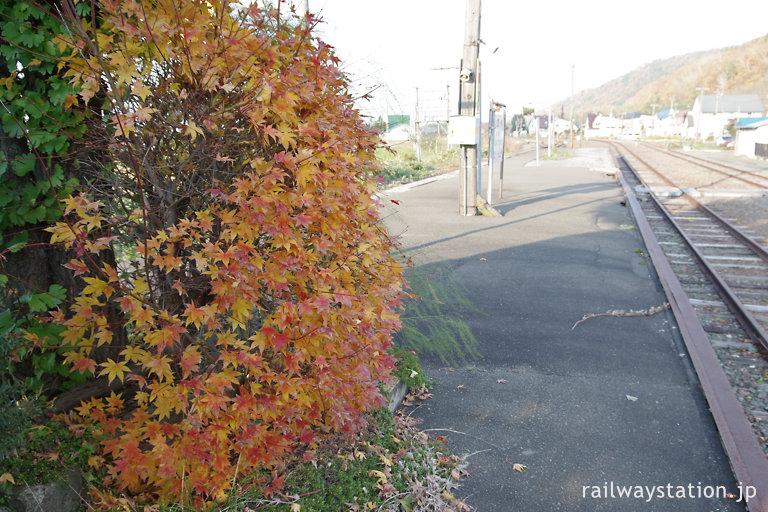 秋の北海道、JR根室本線・布部駅ホーム、色づく紅葉