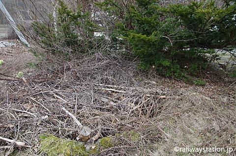 JR北海道・石北本線・下白滝駅、枯枝だらけの池庭跡