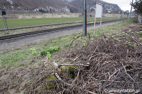 石北本線・下白滝駅、ホーム上の枯池