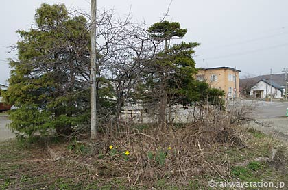 JR北海道・函館本線・豊沼駅、駅ロータリー内の廃れた池庭