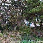 JR九州・日田彦山線・石原町駅の緑豊かな池庭跡