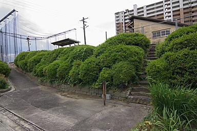 JR九州・久大本線・南久留米駅、築堤斜面の階段と植栽