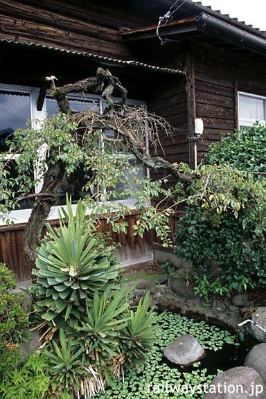 JR九州・久大本線・小野屋駅、木造駅舎と池庭の植込み