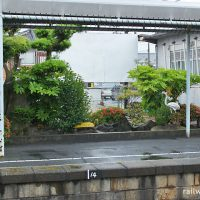 JR日豊本線・築城駅、駅舎横の枯池