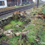 山本駅 (JR九州・唐津線・筑肥線)~レールの間に堂々と?残る枯池~