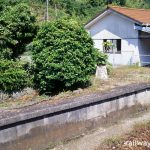JR四国・高徳線・阿波大宮駅の枯れた池と木造駅舎