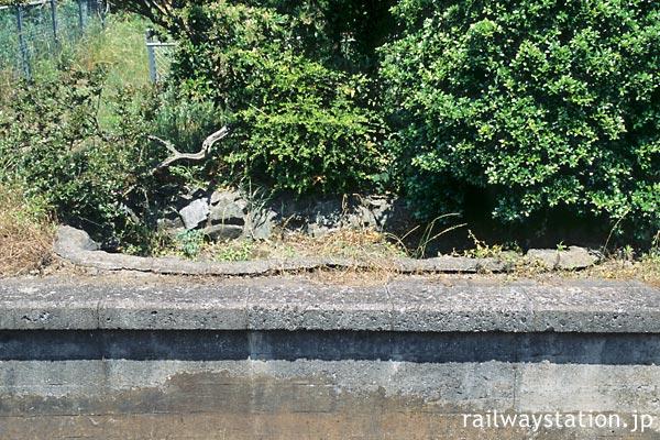 JR高徳線・阿波大宮駅、側線ホーム跡の枯池