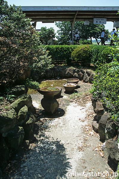JR四国・池谷駅、高徳線と鳴門線ホームの間にある枯池