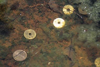 高徳線・鳴門線の池谷駅、枯池の大谷焼の器に投げ入れられた賽銭