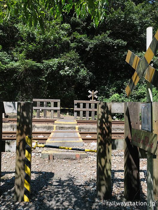 土讃線・坪尻駅南側の踏切