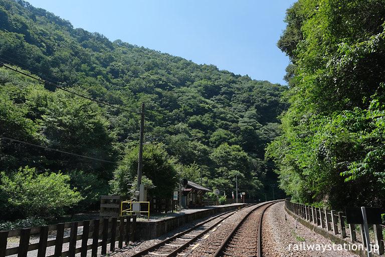 徳島県三好市の秘境駅、土讃線・坪尻駅の山深い風景