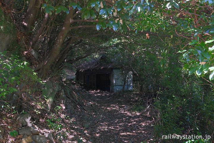 秘境駅・坪尻駅近く、集落への山道の途上にある廃墟