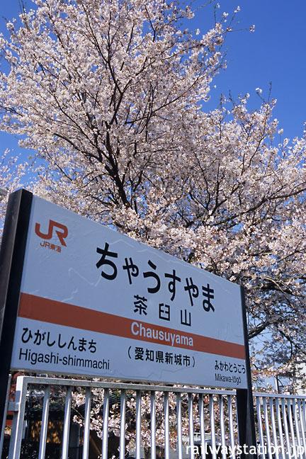 JR飯田線・茶臼山駅、駅名標と満開の桜