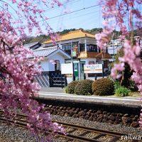 JR飯田線・長篠城駅、桜越しに眺めた駅構内