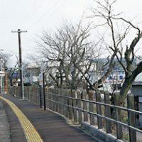 太多線・下切駅~ありし日の春の風景を想う…~