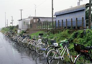 JR東海・太多線・下切駅、桜並木が取り払われたプラットホーム