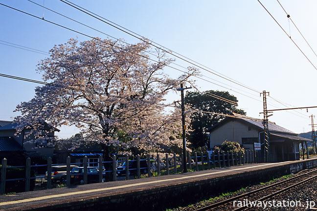 JR飯田線・東上駅、大きな桜の木と木造駅舎