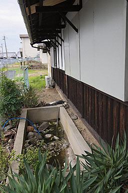 桜井線・櫟本駅、駅舎が載る石垣の上には枯れた池がある