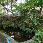JR奈良線・稲荷駅、緑豊かで鯉も泳ぐ池庭跡