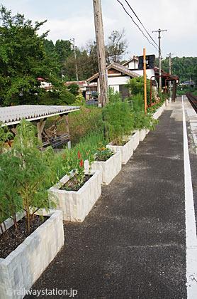 JR木次線・出雲八代駅、ホームの花壇