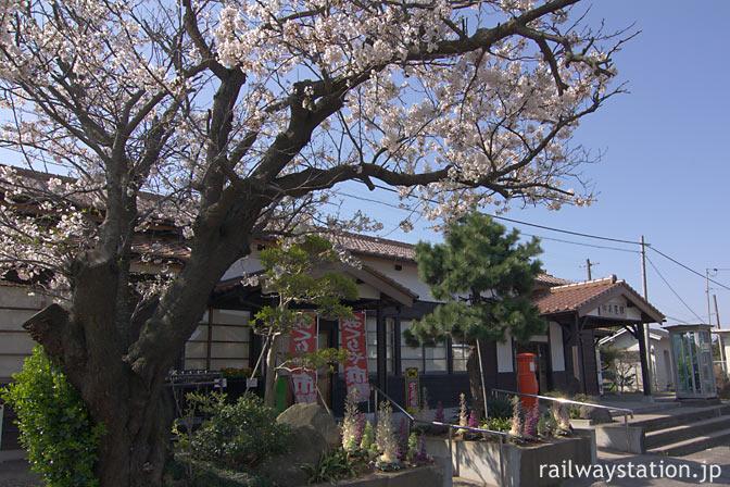 JR山陰本線・御来屋駅、山陰最古の駅舎と桜の老木