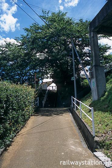 紀勢本線・冷水浦駅、坂の下から駅と桜の木を見上げる
