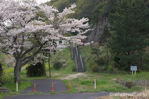 山陰本線・湯里駅、旧駅舎跡地に虚しく咲く桜