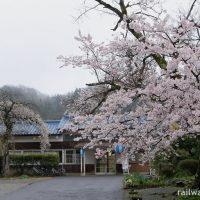 JR西日本・三江線、川平駅、木造駅舎と桜満開の風景