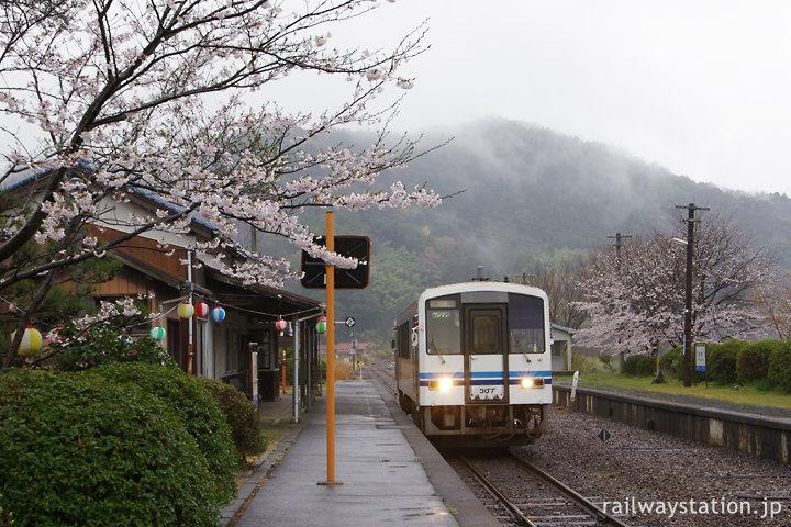 春、桜咲く川平駅に到着した三江線色のキハ120形気動車