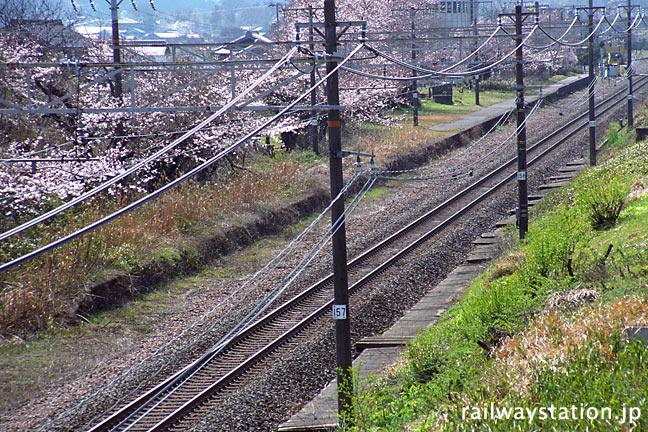 東海道本線・新垂井駅の廃駅跡。プラットホームが残る。