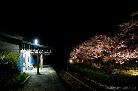 小湊鉄道・夜の月崎駅、桜と木造駅舎