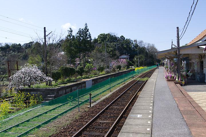 小湊鐡道・養老渓谷駅、廃止された島式ホーム