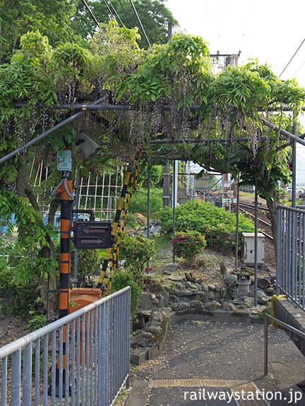 南海高野線・紀伊清水駅、下りホーム端構内踏切横の藤棚と池庭跡